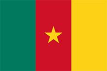 drapeau_cameroun