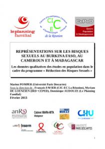 2013_03_Rapp_qualitatif_representations_risques_sexuels